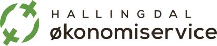 Hallingdal Økonomiservice AS